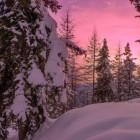 Spelletjes in de sneeuw